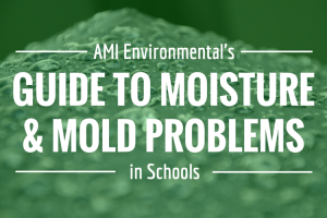 Guide to Mold and Moisture Problems in Schools
