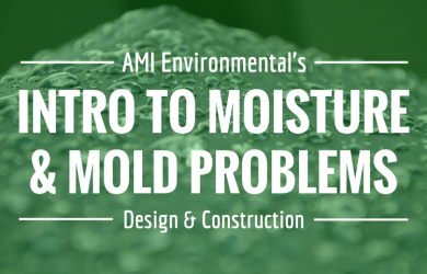 Intro to Mold Moisture Problems Design Construction