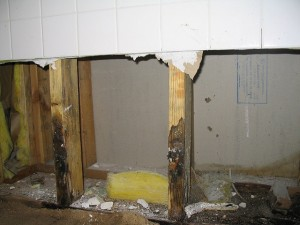 Once mold has penetrated moisture-sensitive products like wood, the materials will have to be completely removed and replaced. Image: Andela Randall, CC 2.0