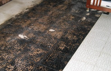 black mold under floor tile