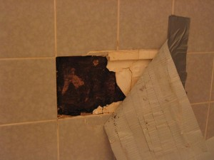 hidden mold growth behind tile