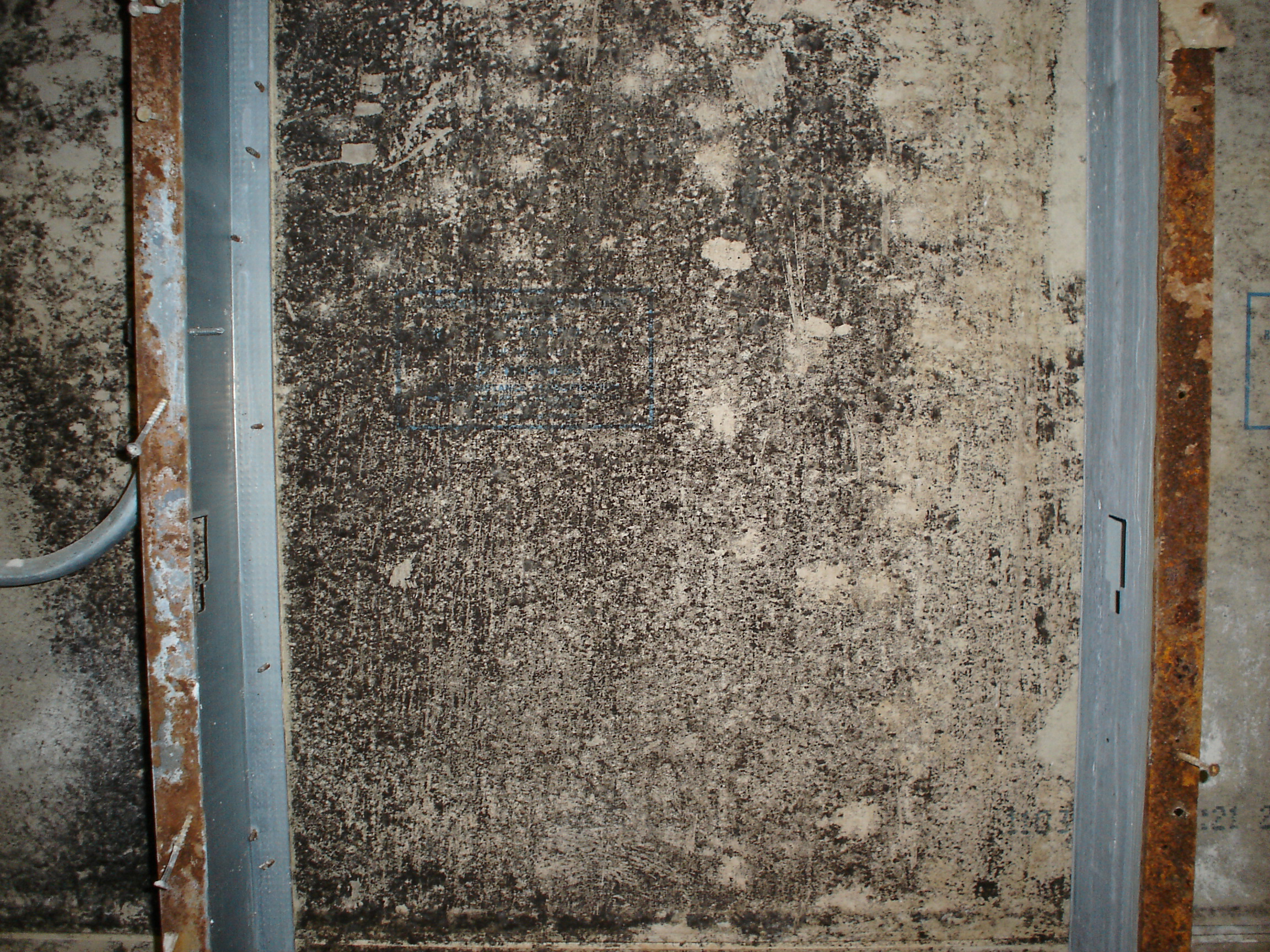 Hidden Moisture Problems Put Students Health At Risk For Exposure To Toxic Mold Attention