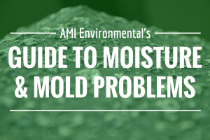 Guide to Mold Moisture Problems in Hospitals