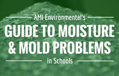 Guide to Mold Moisture Problems in Schools